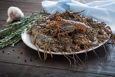 Fresh uncooked Spiny lobsters, raw group of crayfish ready for cooking, selective focus and shallow dof. Stock Photo