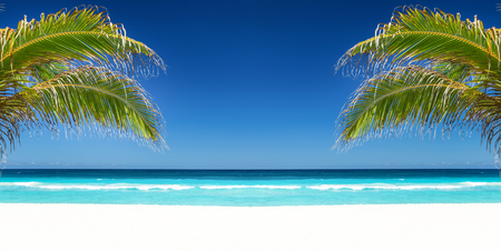 Tropical beach with coconut palm tree leafs, turquoise sea water and white sand on caribbean coastline