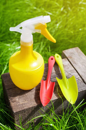 Gardening tools. Plastic watering can, mini shovel and fork on grass garden background, nobody Stock Photo
