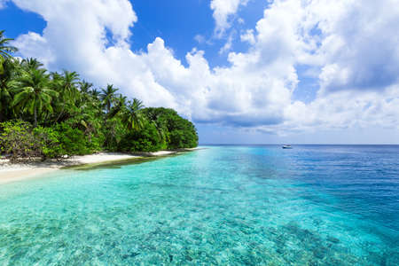 Tropical pristine beach with coconut palms and turquoise water, Maldives travel destination card. Stock Photo