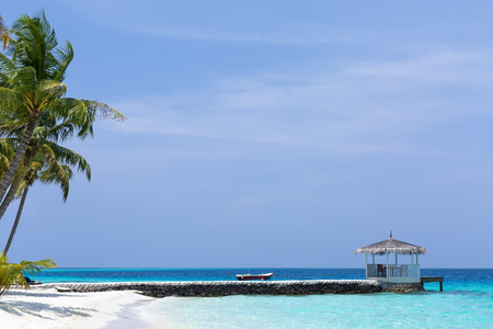 Exotic maldivian nature, coconut palm trees, summer house and sea view. Travel destination card