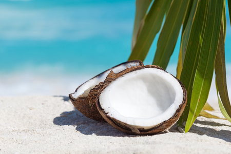 Two halfs of cracked brown coconut on white sandy beach with palms leaf and turquoise sea background, close up Stock Photo