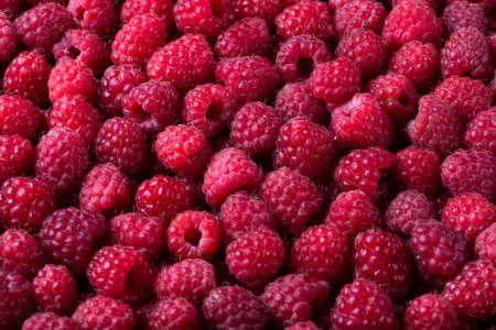 Ripe raspberry background. Closeup berries