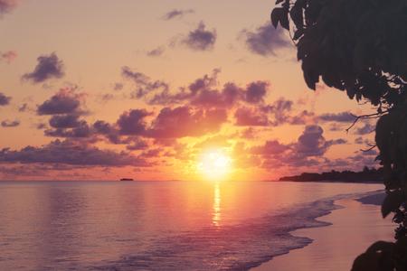 View at sunset on maldivian beach. Travel destination  Stock Photo