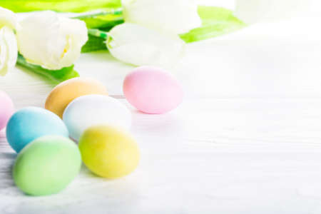 Colorful pastel easter eggs on rustic wooden white background, decorated tulip flowers. Happy Easter card Stock Photo