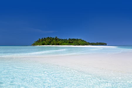 Wild Maldives island with pristine sandy beach and azure crystal water, untouched maldivian nature for travel destinations