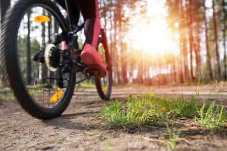 Woman riding a mountain bicycle along path at the forest. Healthy lifestyle and sport concept. Closeup on grass Stock Photo