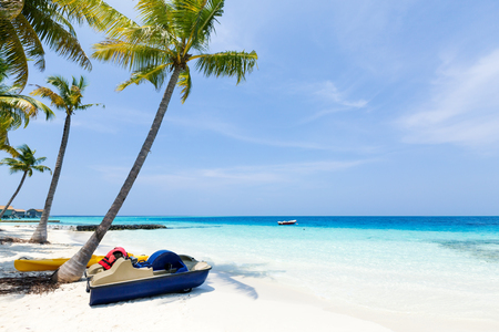 Perfect destination for travel and relax, Maldives tropical beach with coconut palms and sea view Stock Photo
