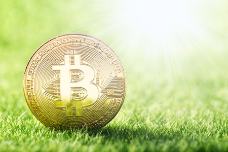 Golden coin of Bitcoin on green grass background. Digital web currency  Stock Photo
