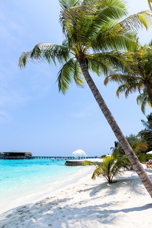 Perfect destination for travel and relax, Maldives tropical beach with coconut palms and sea view Stock fotó