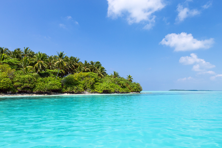 Clear water and tropical coast with coconut palm trees, amazing bounty beach, nobody Stock Photo