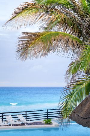 Poolside near caribbean sea. Beautiful view through palm tree leafs