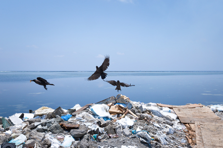 Dump on tropical island. Global pollution problem in the world