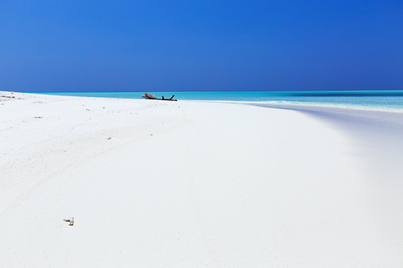 Beautiful Maldives nature, pristine white sandy beach and crystal sea water, tropical travel destination