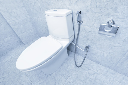 White toilet bowl in a bathroom interior. Blue tone Stock Photo