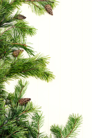 Decorated pine branches at left side with cones on white wooden table,  free space Banque d'images