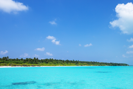 Tropical beach lagoon. Coconut palm trees on beachfront and azure water, perfect getaway for unplugged holiday vacation