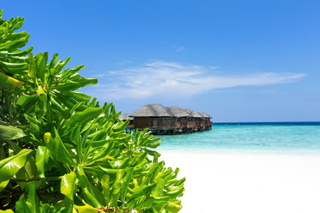 Tropical travel card with pristine beach and water bungalows at maldivian island