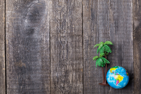 Plastic toy of palm tree and globe on rustic wooden background, Closeup Stock Photo