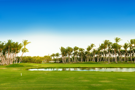 Golf green field on tropical island, golfing course fairway at sunny day, nobody Imagens