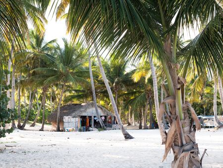 PUNTA CANA, DOMINICAN REPUBLIC - 18 JANUARY 2019: Souvenirs shop on beach in palm tree forest with different goods