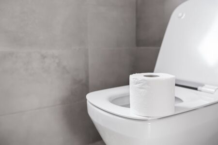 Roll of toilet paper on seat at restroom, nobody