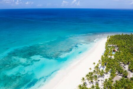 Aerial view on tropical seashore with coconut palm trees and caribbean sea. Travel destinations. Summer holidays