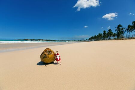 Greeting card with Santa toy and coconut on beach close to sea. Travel background and Christmas and New Year decoration with copy space