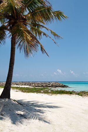 Bikini beach at Maafushi, white sand and coconut pams, perfect vacation on Maldives islands