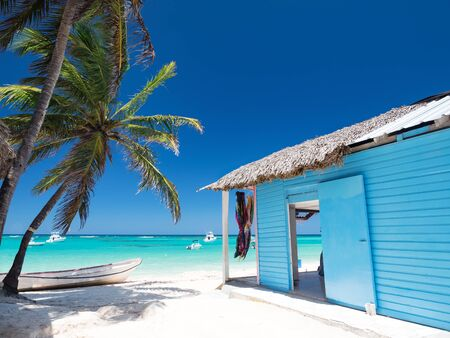 Typical caribbean house near Atlantic ocean beach with coconut palm tree. Blue and red exterior of tropical wooden hut