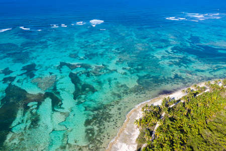 Aerial view from top on tropical island with coconut palm trees and turquoise caribbean sea. Dominican Republic