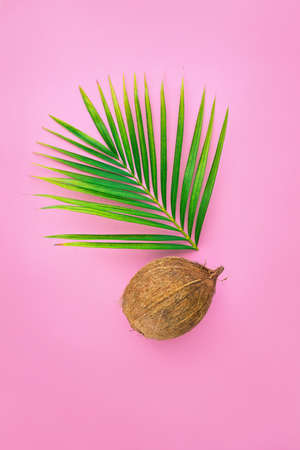 Flat lay composition with coconut and palm leaf on color pink background. Creative summer tropical card