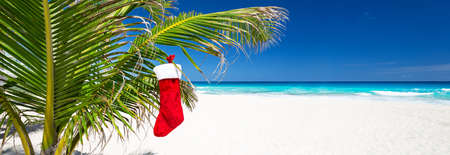 Christmas stocking hanging on coconut palm tree leaf at tropical sandy beach. New year celebration 免版税图像