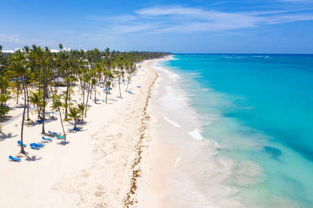 Aerial view from drone on caribbean sea beach with palm trees ans sunbeds, travel destination. Summer holidays