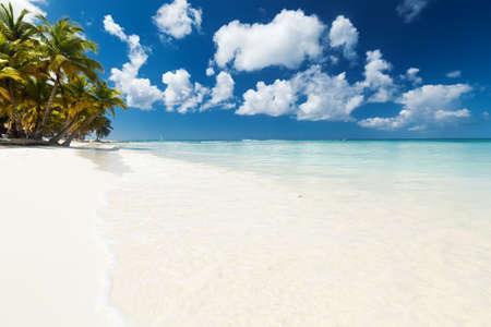 Coconut palm trees on white sandy beach on caribbean island. Vacation holidays summer background Archivio Fotografico