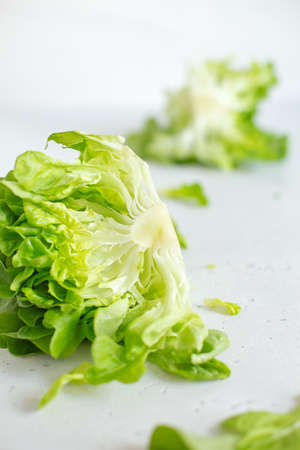 Half slice of green lettuce leaves on white background. Fresh butter head salad closeup. Selective focus Stockfoto