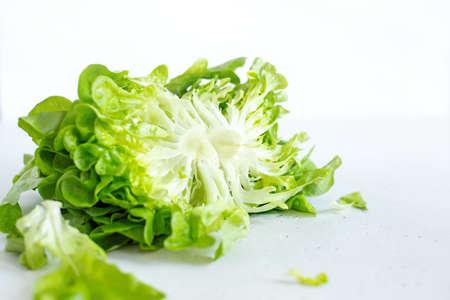 Half slice of green lettuce leaves on white background. Fresh butter head salad closeup. Selective focus Reklamní fotografie - 153700037