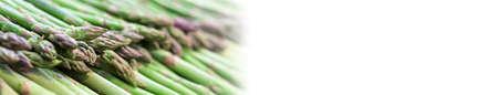 Green fresh asparagus on sale in foodmarket, nobody. Long banner