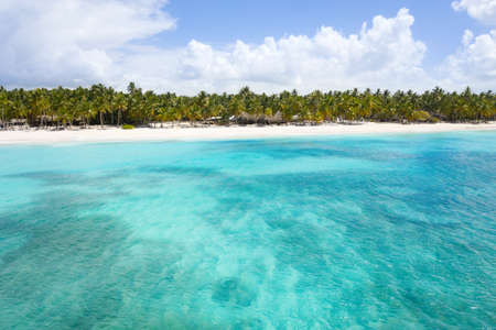 Aerial view on tropical island with coconut palm trees and turquoise sea. Travel destinations. Summer holidays Reklamní fotografie - 153664227