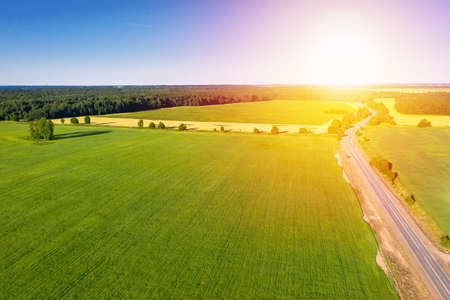 Asphalt road near summer forest and field with trees. Wild nature at sunset. Aerial view from drone Reklamní fotografie - 153700549