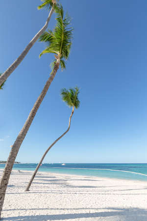 Dominican Republic coastline with resorts, palm trees and ocean. Travel destinations Punta Cana, caribbean vacations