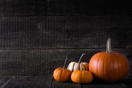 Ripe pumpkins on rustic wooden background. Autumn concept Reklamní fotografie