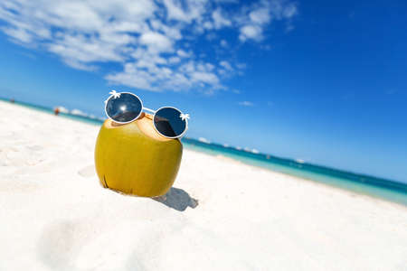Green funny coconut in sun glasses on white sandy dominican beach, fresh cocktail on sand, summer travel concept background. 스톡 콘텐츠