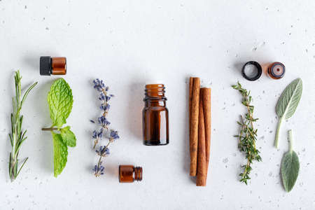 Floral and herbal sprigs of lavender, thyme, mint leaves and cinnamon, flat lay on neutral background. Ingredients and amber bottles for essential oils 스톡 콘텐츠