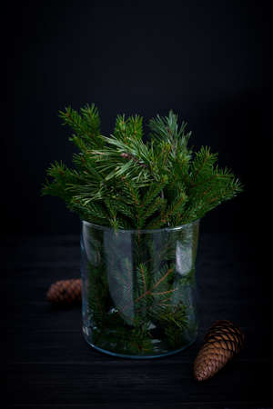 Eco-friendly natural holiday decoration. Spruce tree branches in glass, dark moody card, zero waste Christmas concept
