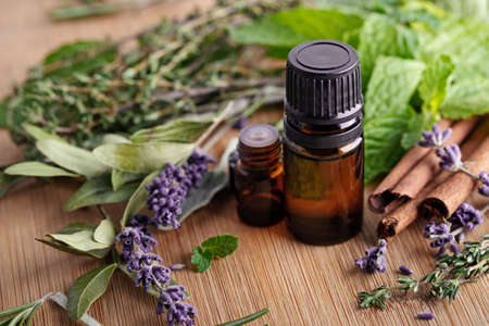 Alternative medicine. Natural immutity boosters and virus defeating herbal ingredients for healthy lifestyle. Essential oils for connection with nature.
