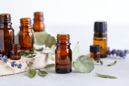 Collection of various essential oils in amber bottles with different herbal ingredients - mint, rosemary and eucalyptus leaves on neutral background