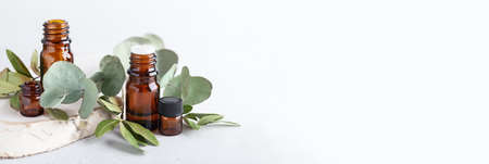 Different branches of eucalyptus leaves with blank amber bottles. Botanical herbs and dark glass jars on neutral background. Aromatherapy for booster immune and air purifier, header banner