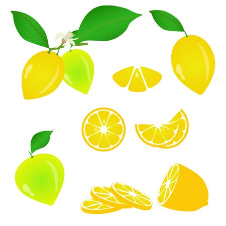 lemon lime: set of fresh lemons white isolated
