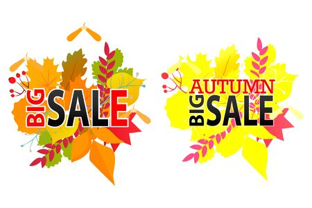 foliage: Autumn Foliage sale banner Illustration